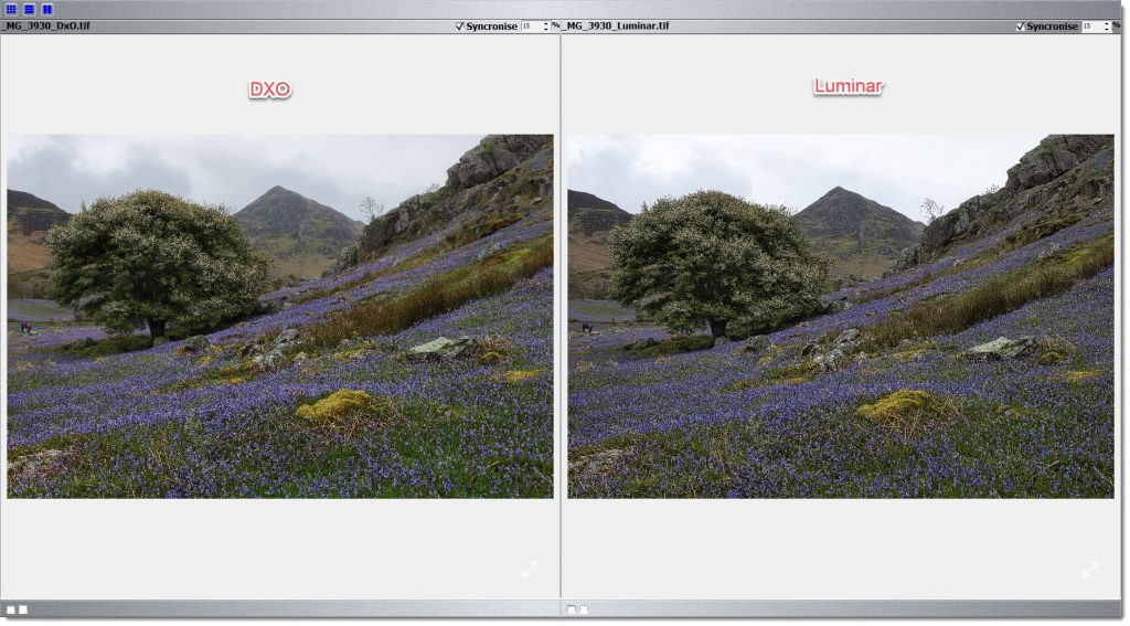 DXO Photo Lab 4 vs Luminar V4 - Sharpening