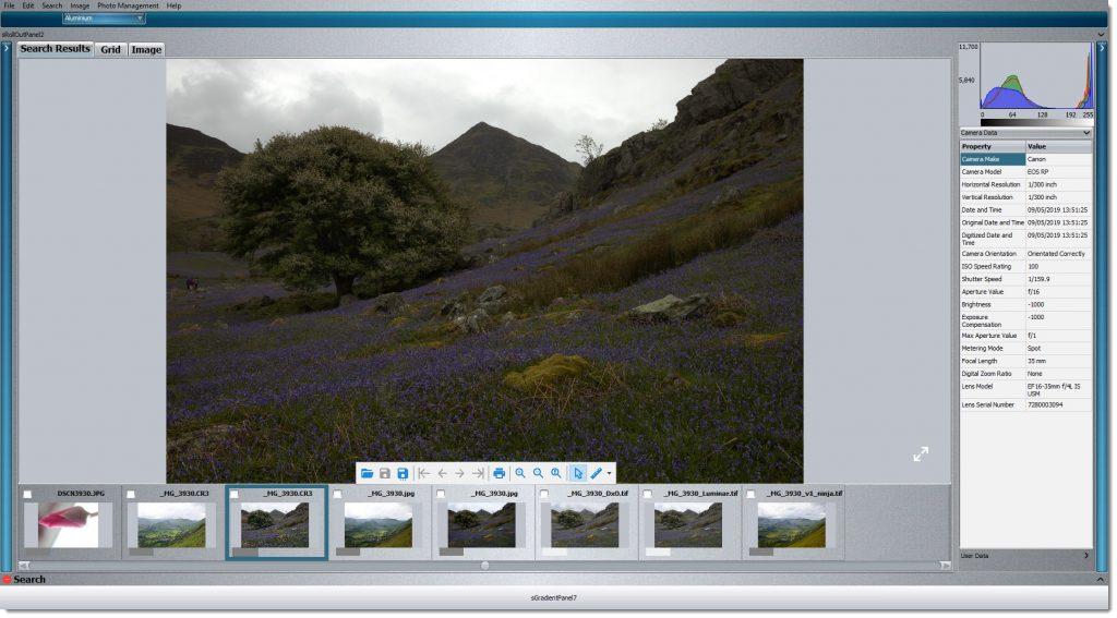DXO vs Luminar The Test Image