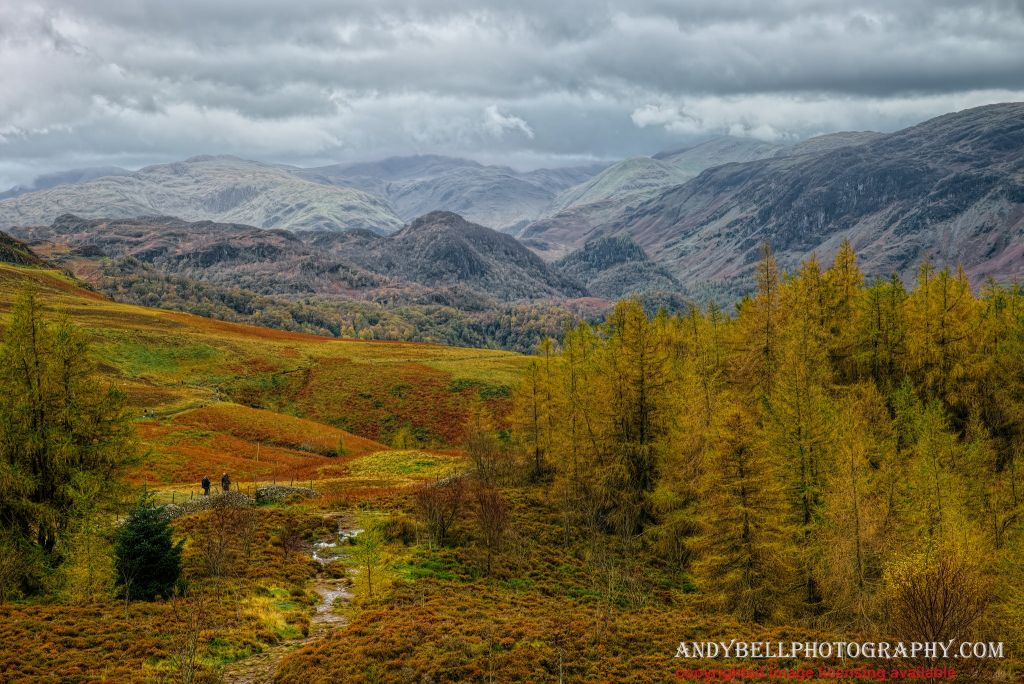 Borrowdale Fells 20171026-_SAM5185_v1_ninja.jpg